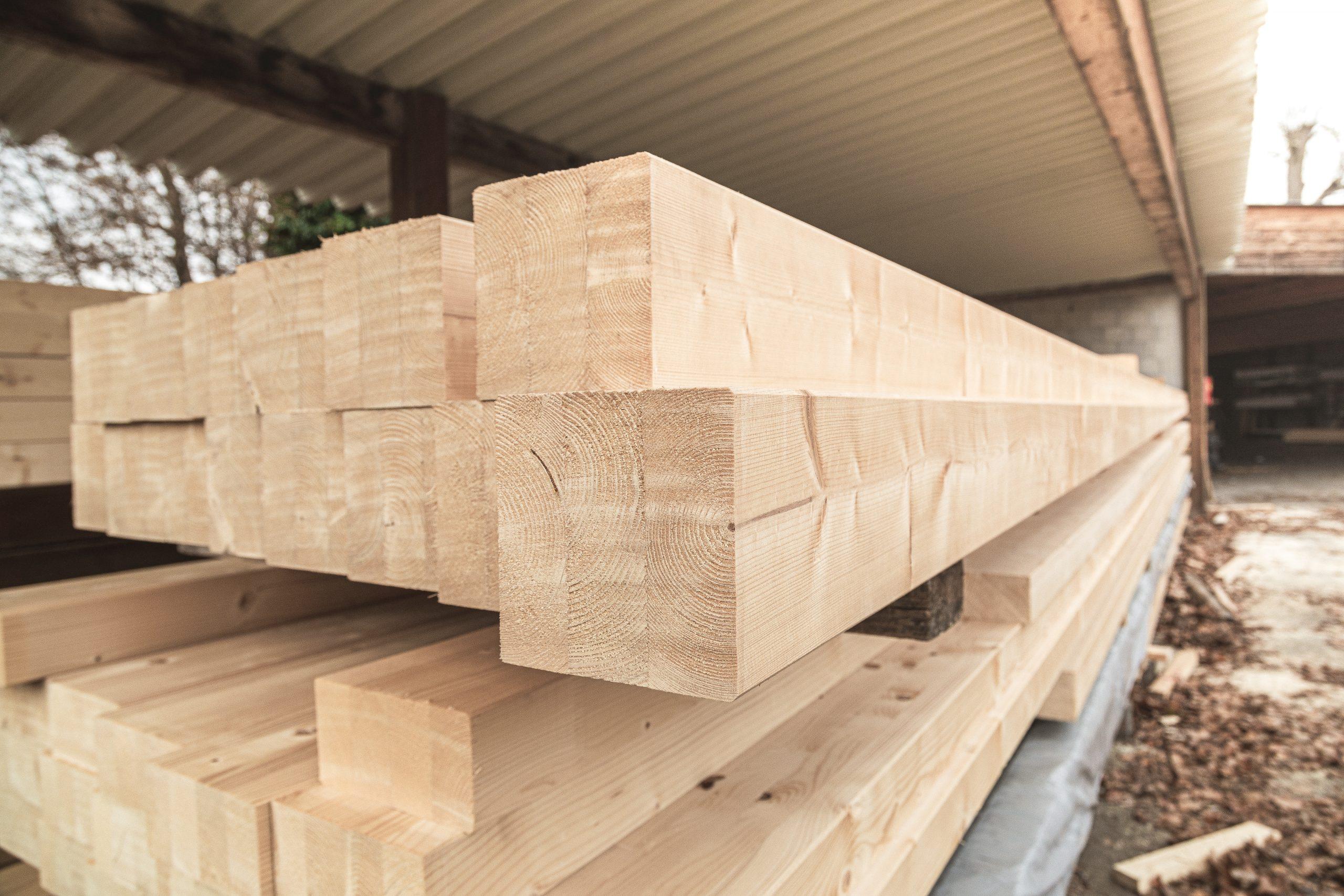 HolzWahl-15