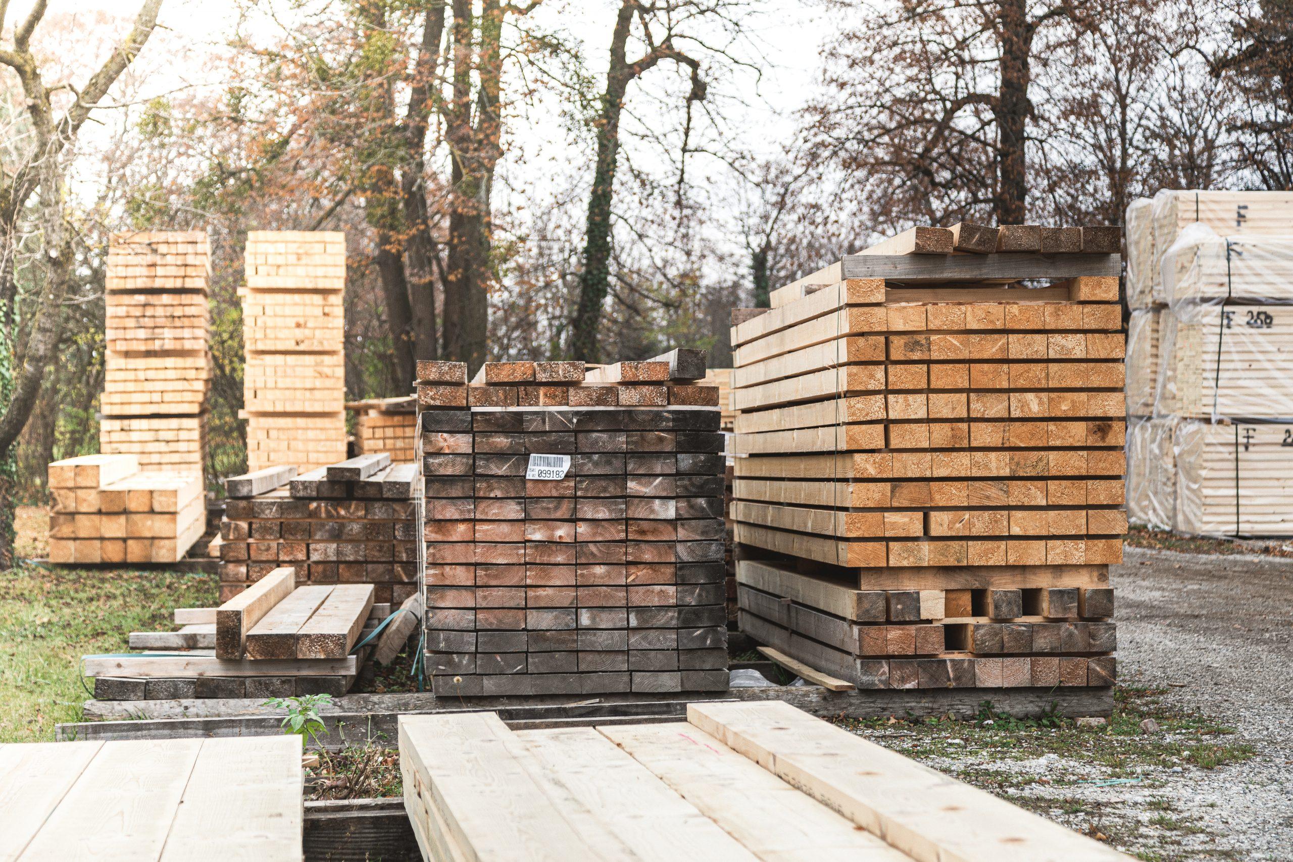 HolzWahl-50